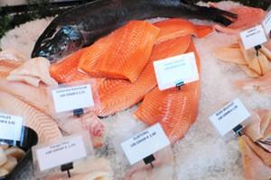 Visverpakkingen voor verschillende soorten verse vis