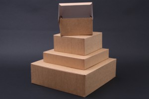 Milieukraft dozen